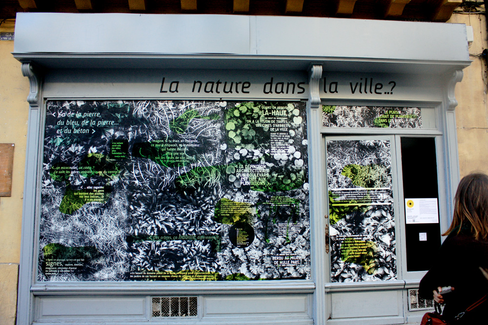 BerangereMagaud-fresques/pasdequartier