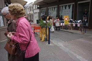 BerangereMagaud/centreville-Limoges-Hommesnaturels