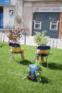 berangereMagaud/place delaMotte-Limoges-Hommesnaturels