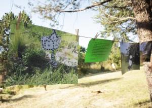 Atelier-mosson-jardin-BerangereMAGAUD